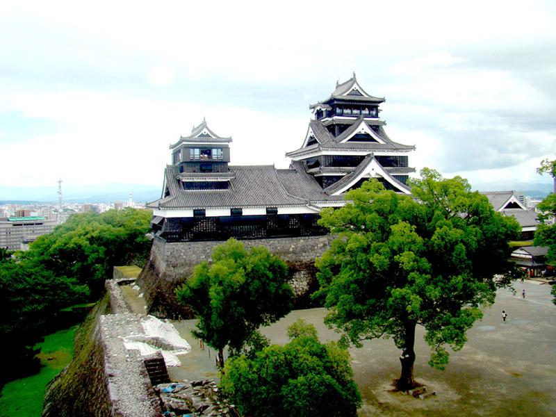 lime castle shikkui royal japanese plasters portfolio